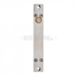 Stainless Steel Bolt Action Lock Fail Safe with Hold Open Time 12VDC